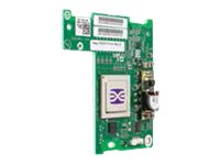 Emulex LightPulse LPE1205-M - Host bus adapter - 8Gb Fibre